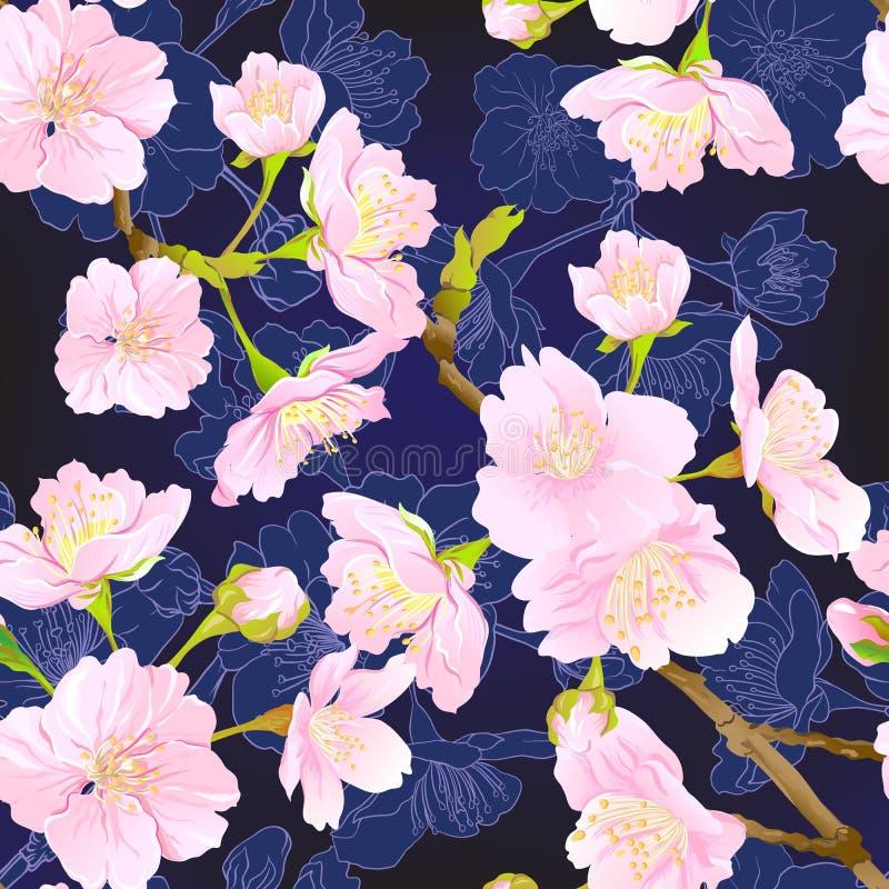 Sakura 6 ελαφριού κτυπήματος ελεύθερη απεικόνιση δικαιώματος