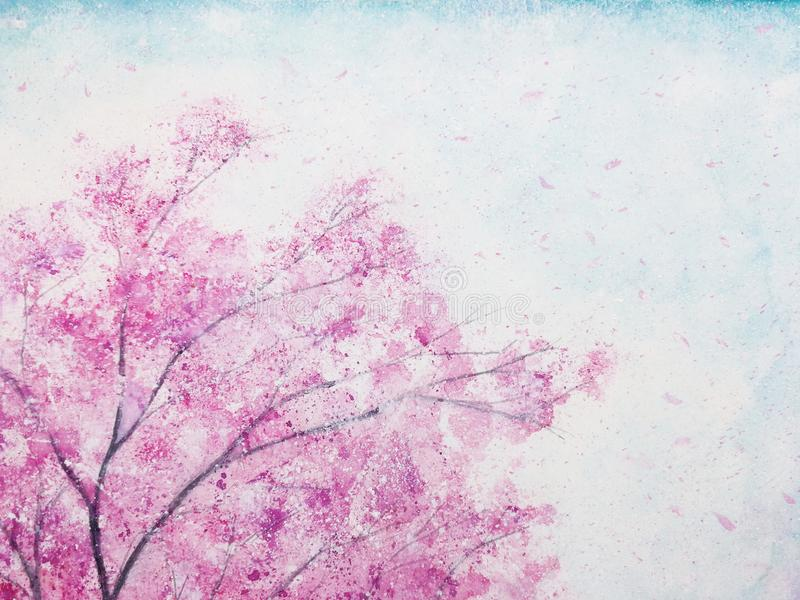Sakura λουλουδιών ανθών κερασιών Watercolor στοκ εικόνες με δικαίωμα ελεύθερης χρήσης