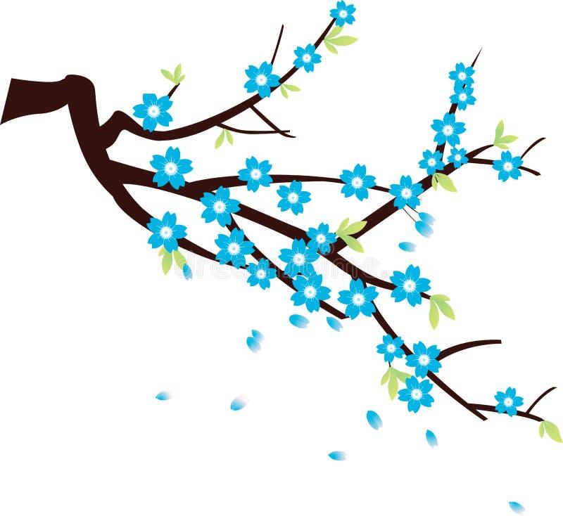 Download Sakura stock vector. Illustration of formal, gardening - 10213021