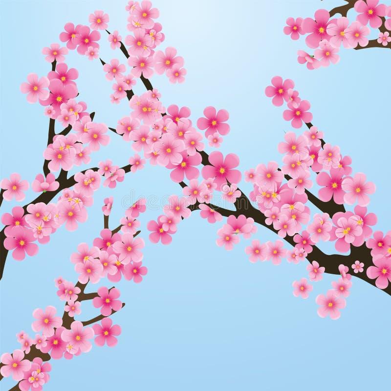 Sakura stock de ilustración