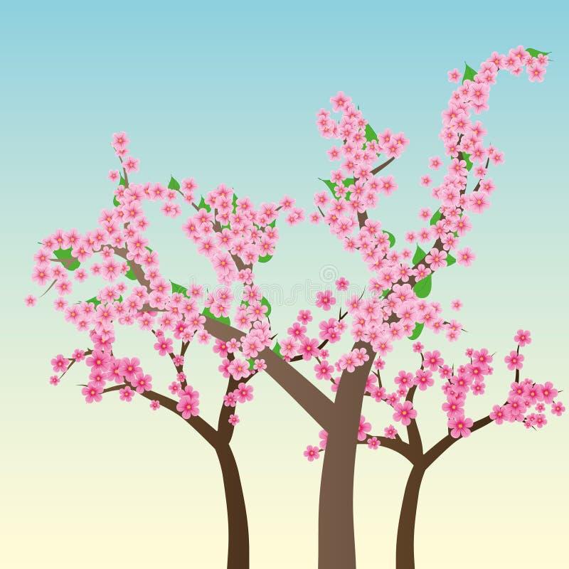 Download Sakura stock vector. Illustration of retro, gentle, china - 19080811