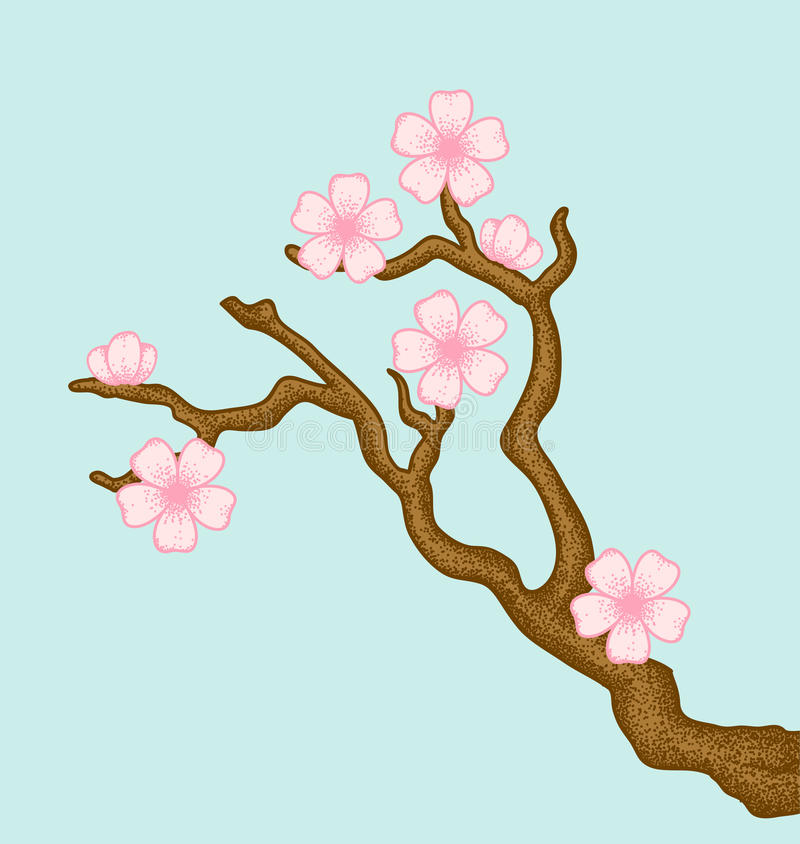 Download Sakura stock vector. Image of bloom, branch, beauty, japanese - 22963285