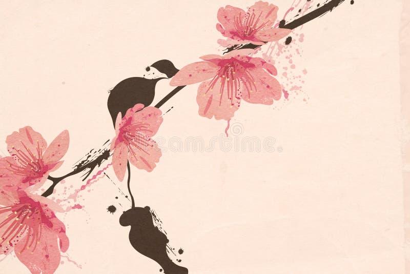 Sakura stock abbildung