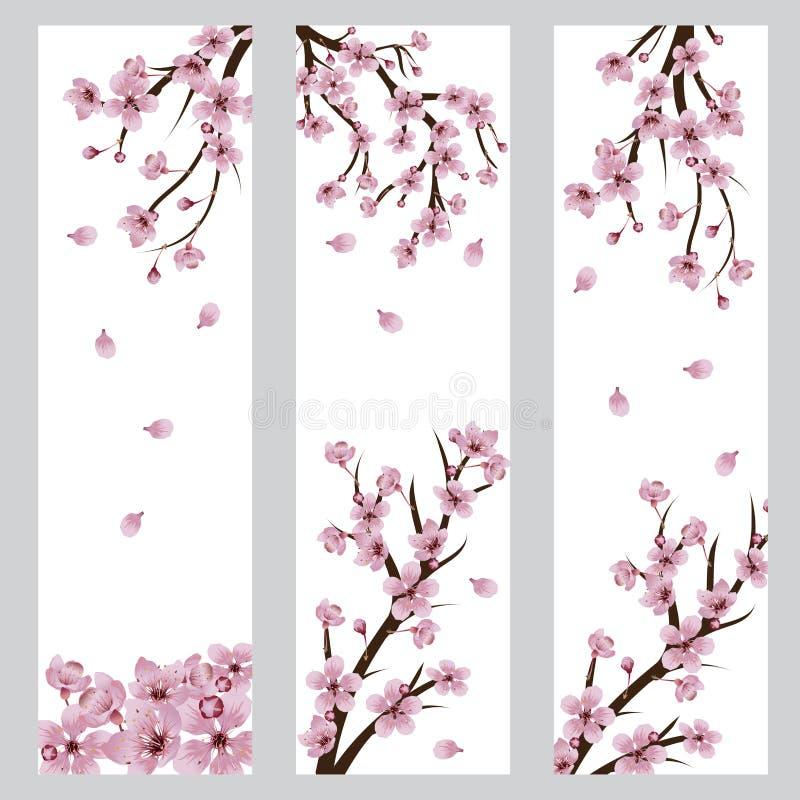 Sakura Banner de floraison illustration libre de droits