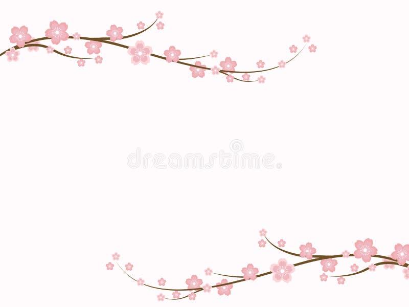 Sakura-Blüten stock abbildung