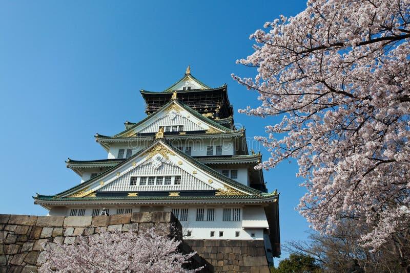 Sakura blomning på Osaka Castle arkivfoton