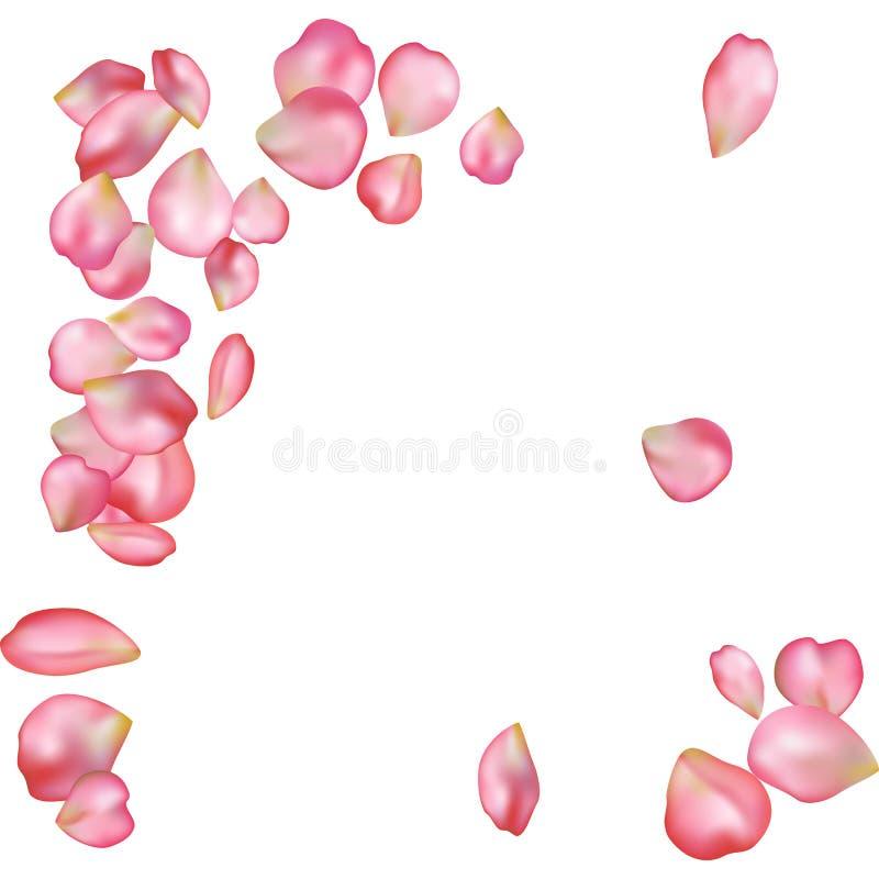 Sakura blossoms blank background template. stock illustration