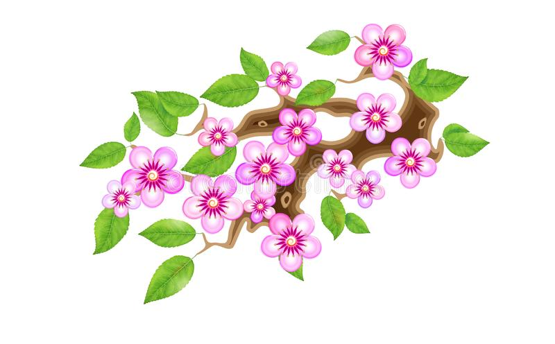 Sakura branch with flowers in anime style, cherry blossom, illustration. Partially animated stylistic solution in. Unorthodox East Asian decoration tradition vector illustration
