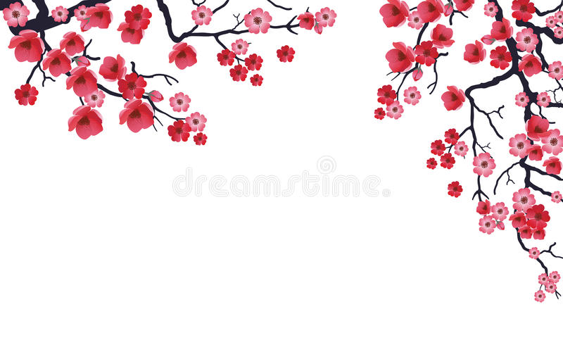 Sakura Branch04 stock images