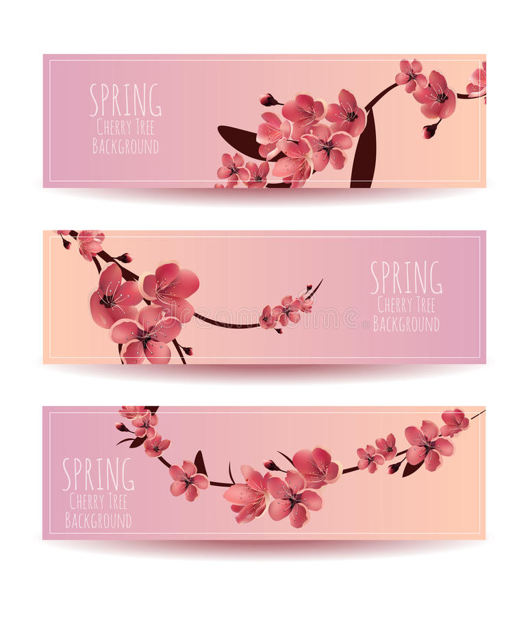 Sakura, Cherry Blossoming Tree Vector Background Illustartion royalty-vrije illustratie