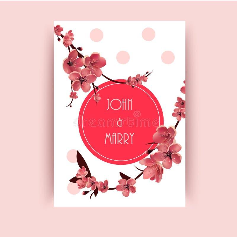 Sakura, Cherry Blossoming Tree Vector Background-Illustratie vector illustratie