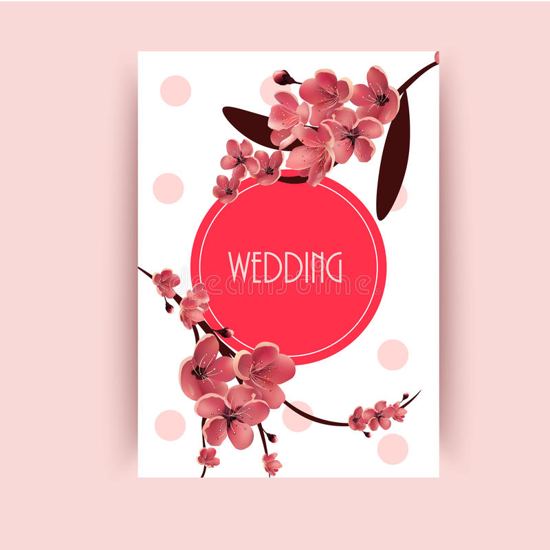 Sakura, Cherry Blossoming Tree Vector Background-Illustratie royalty-vrije illustratie