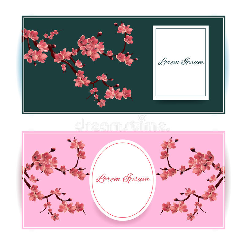 Sakura, Cherry Blossoming Tree Vector Card Illustration. Set of Beautiful Floral Banners, Greeting cards, Wedding Invitations stock illustration