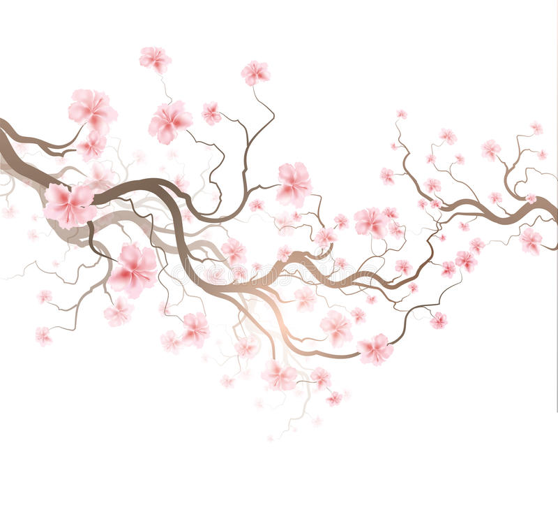 Download Sakura stock vector. Illustration of culture, chinese - 42265467