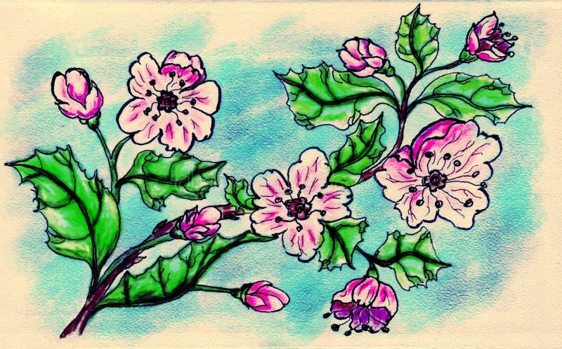 Sakura Doodle illustrazione vettoriale