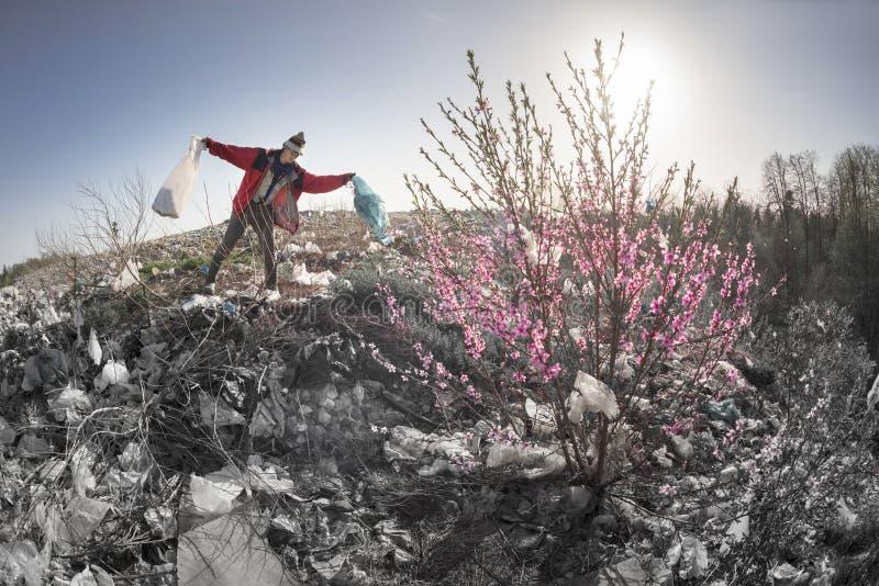 Sakura en de aaseterman stock foto