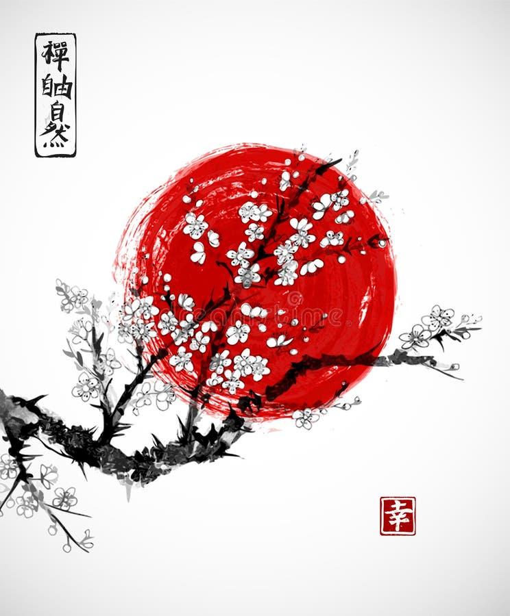 Sakura en el flor y el sol rojo, símbolo de Japón en el fondo blanco Contiene los jeroglíficos - zen, libertad, naturaleza stock de ilustración