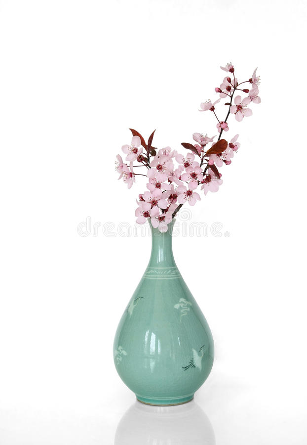 Sakura en un florero japonés foto de archivo