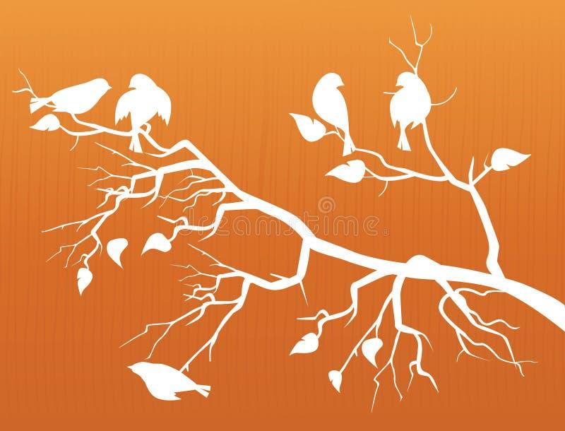 Sakura en Vogels (de Bloesem van de Kers) vector illustratie