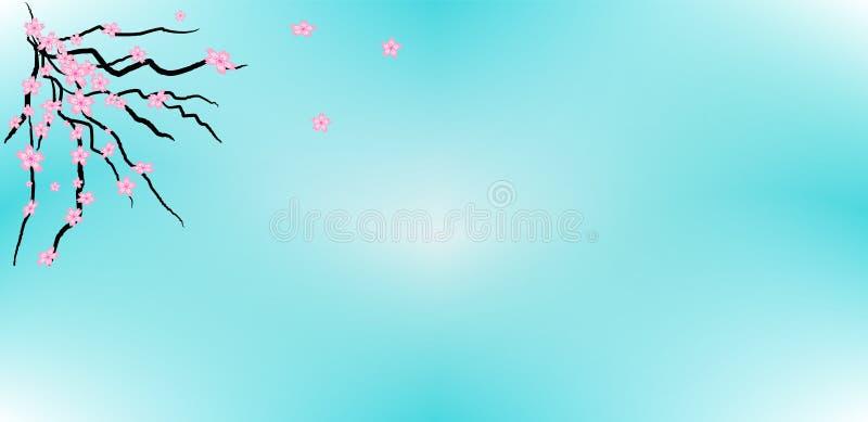 Sakura Flower Collection Illustration Vector nel fondo del cielo blu fotografie stock