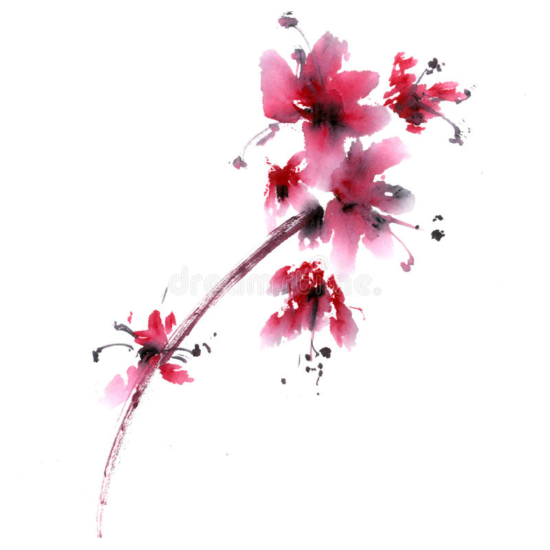 Sakura flower. vector illustration