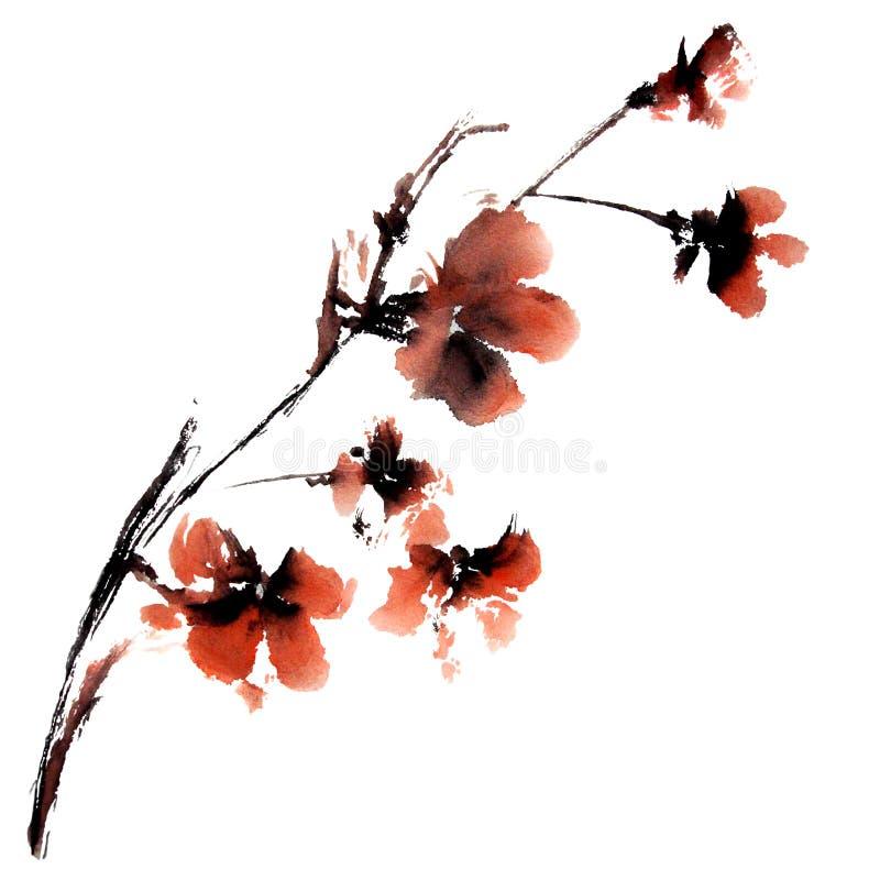 Sakura flower. royalty free illustration
