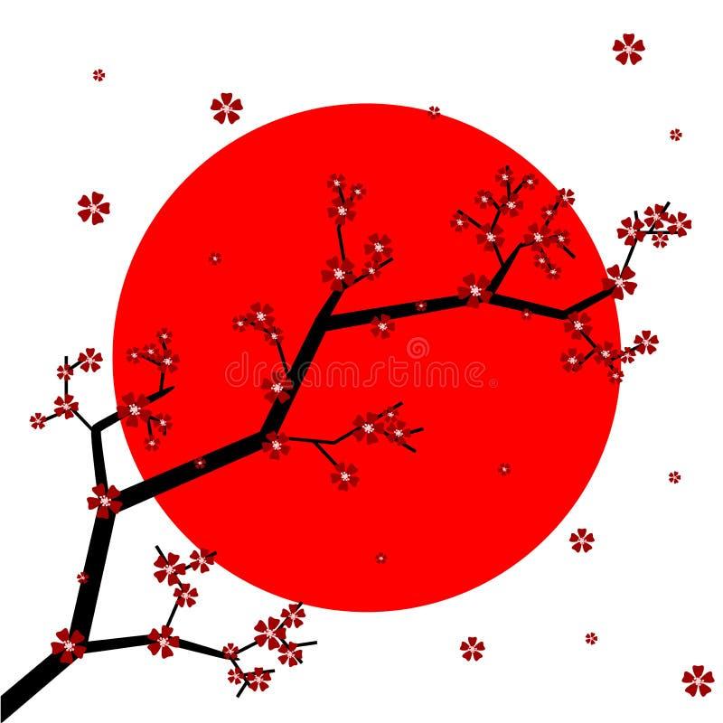Download Sakura stock vector. Illustration of spring, japan, floral - 34228305