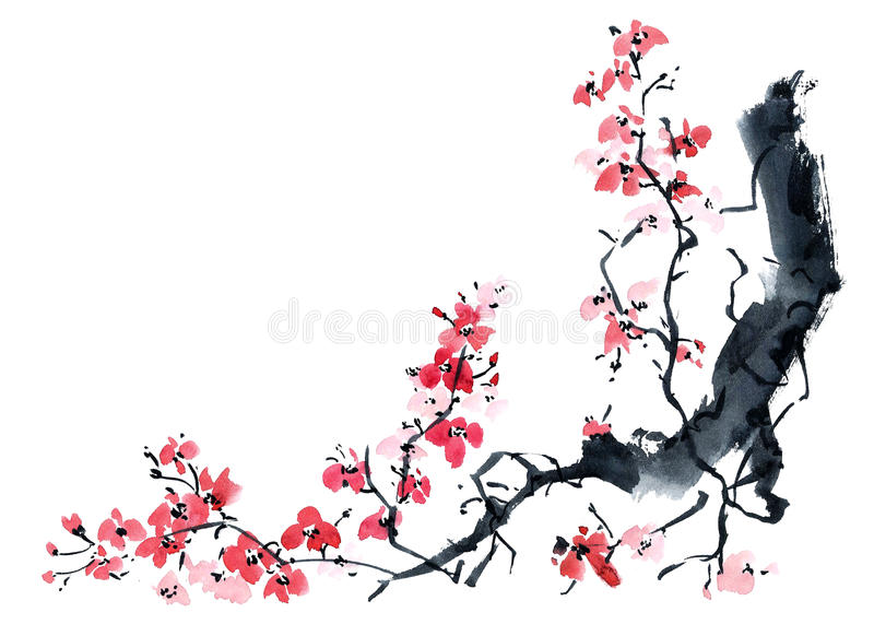 Sakura. Illustration of blossom tree. royalty free illustration