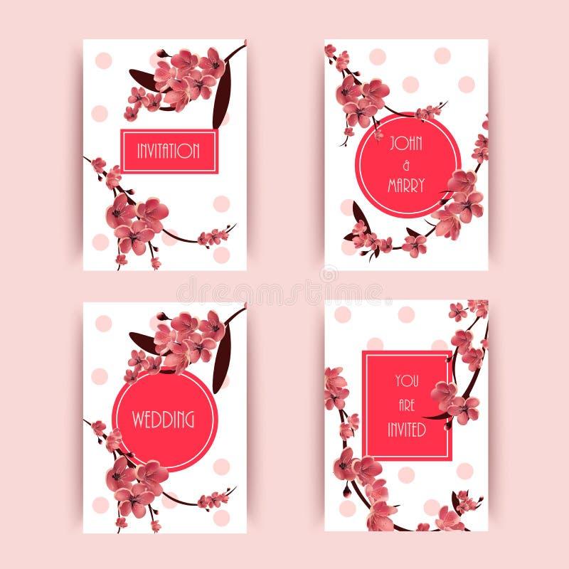 Sakura, ilustração de Cherry Blossoming Tree Vetora Background ilustração do vetor