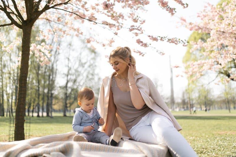 Sakura k?rsb?rsr?d blomning - den unga mammamodern som sitter med hennes pys, behandla som ett barn sonen i parkerar i Riga, Lett royaltyfri bild