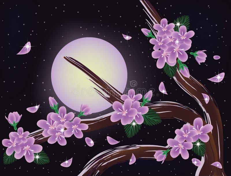 Sakura kwitnie na nocnym niebie ilustracji