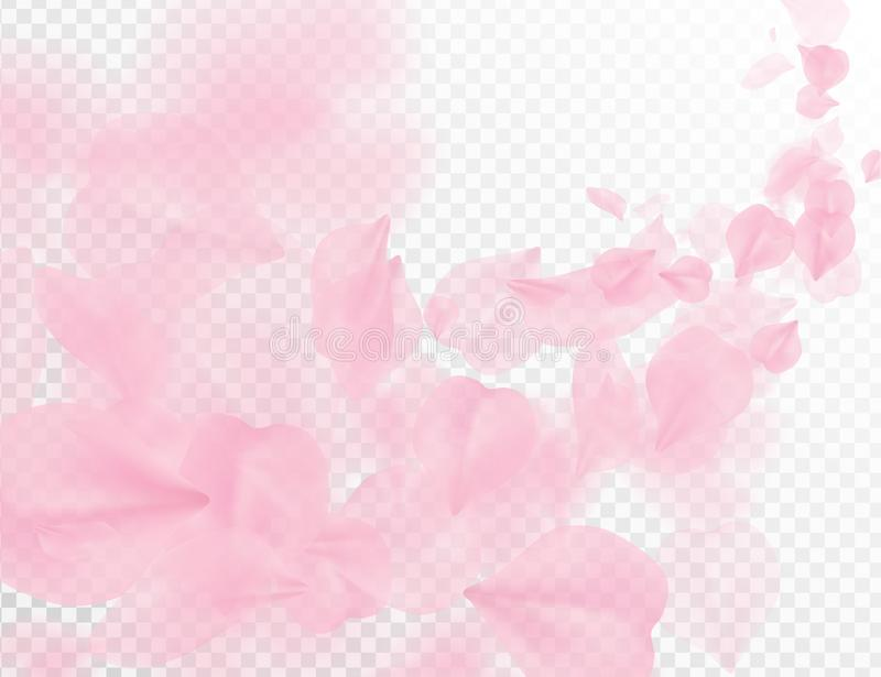 Sakura petal flying vector background. Pink flower petals wave illustration isolated on transparent white. 3D romantic valentines. Day spring tender light royalty free illustration