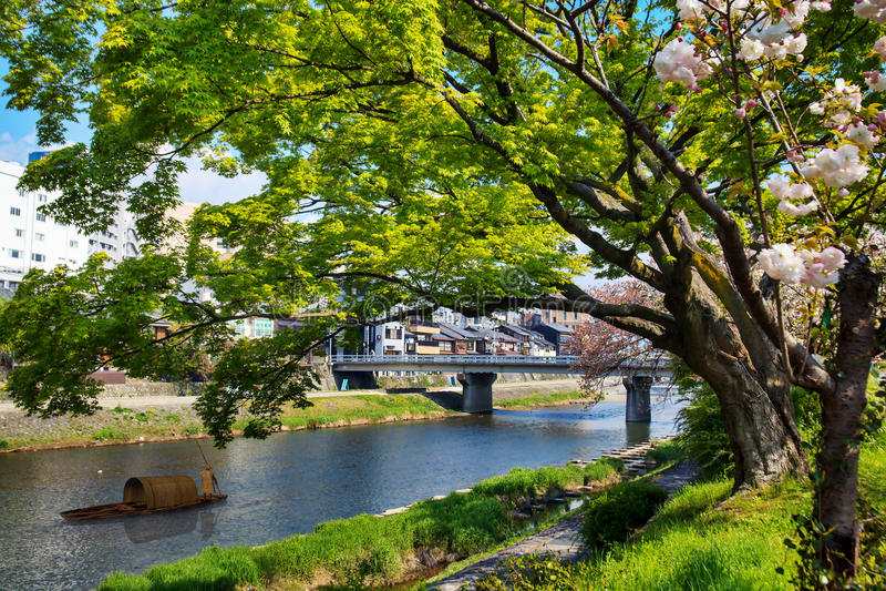 Download Sakura seaskon w Japonia zdjęcie stock. Obraz złożonej z kwiecisty - 42525724