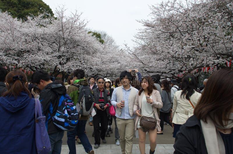 Download Sakura Season En El Parque De Ueno Fotografía editorial - Imagen de recorrido, ciudad: 42430797