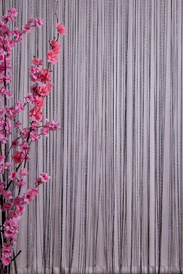 Sakura sur le mur noir et blanc photographie stock