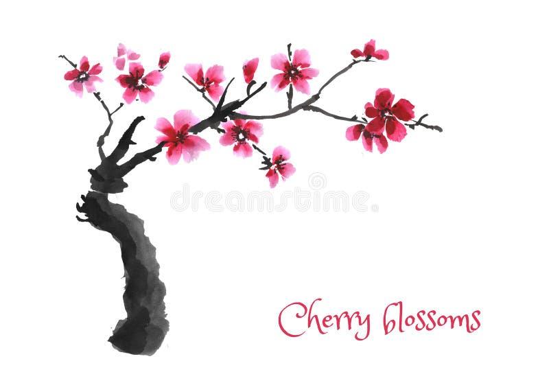 Sakura Tree Cereza floreciente stock de ilustración