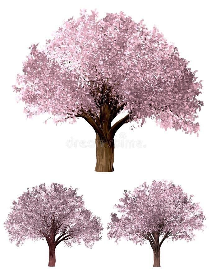 Sakura Tree Grön Forrest trädbakgrund vektor illustrationer