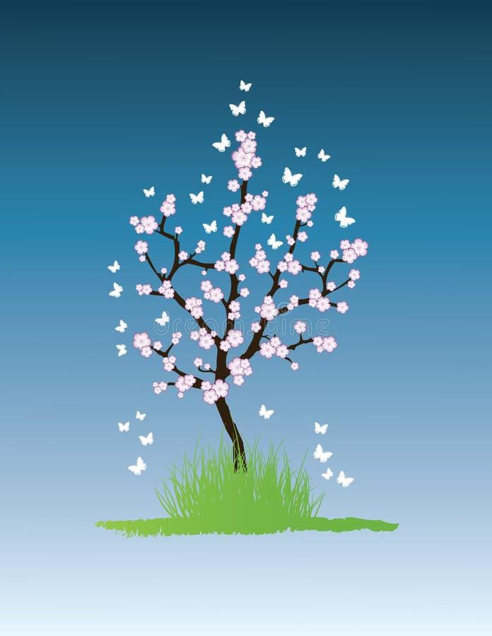 sakura treevektor royaltyfri illustrationer