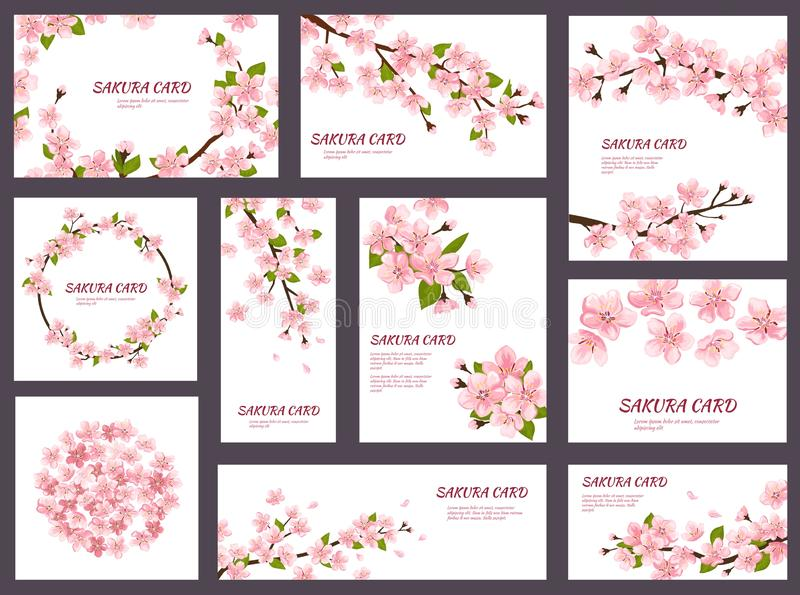 Sakura vector blossom cherry greeting cards with spring pink blooming flowers illustration japanese set of wedding stock illustration