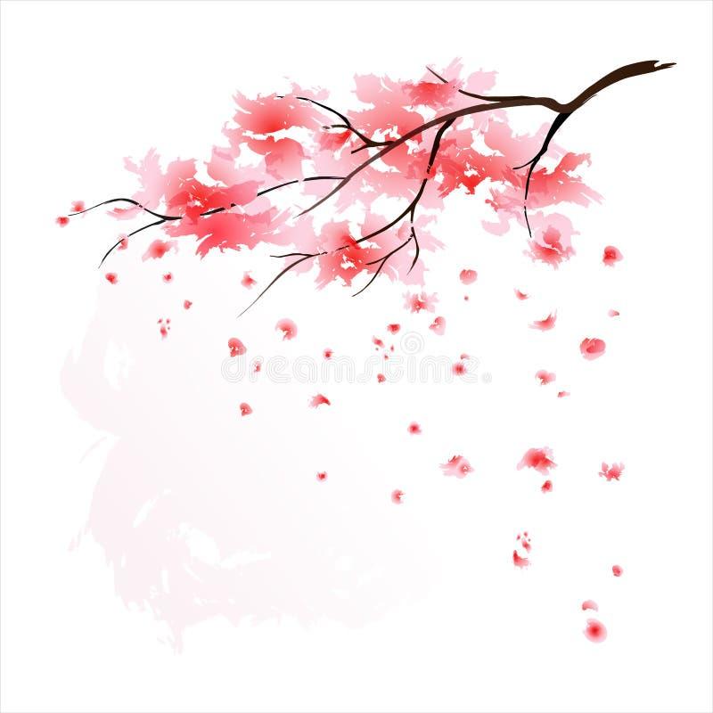 Sakura watercolour stock illustratie