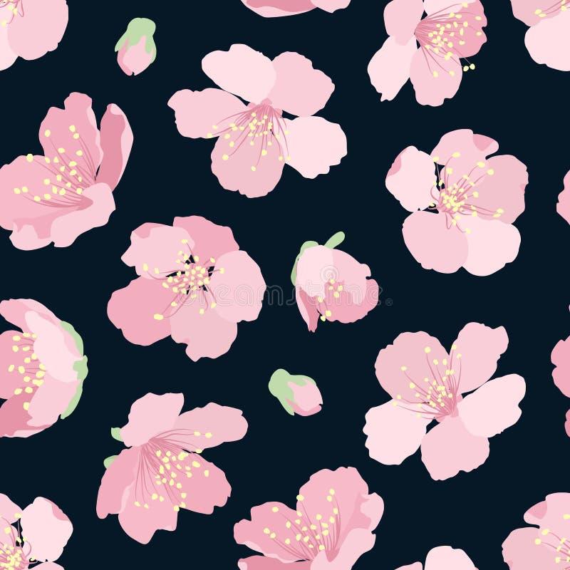 Sakura wiśni menchie kwitną bezszwową deseniową noc ilustracji