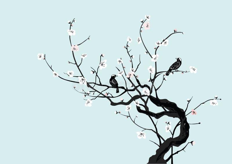 Sakura y pájaros stock de ilustración