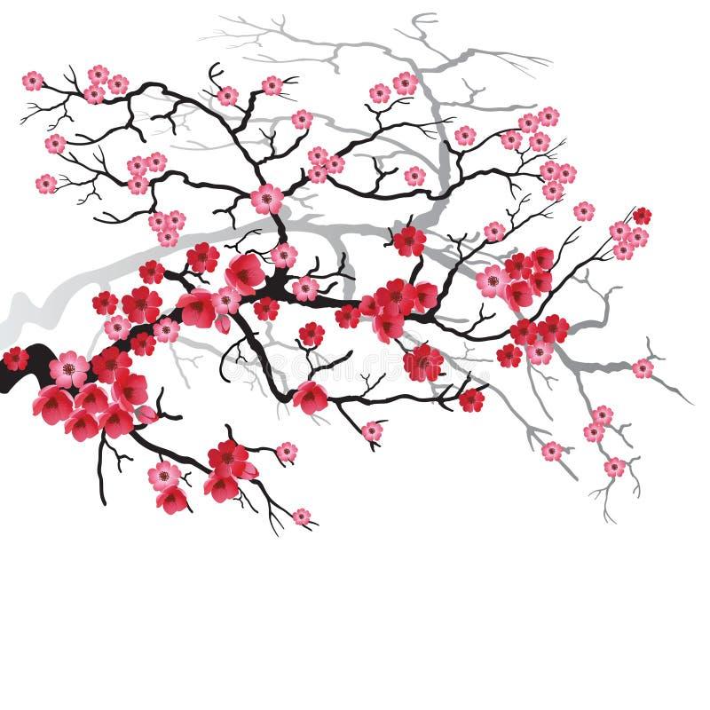 Sakura-Zweig vektor abbildung