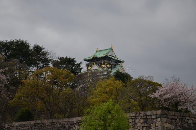 Sakurabomen en Osaka Castle stock afbeelding