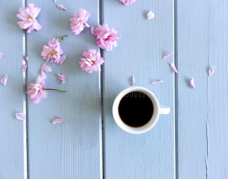 Sakuragrenar med blommor, vit kopp med svart kaffe på träbakgrund Platt, översiktlig, med plats för arkivbilder