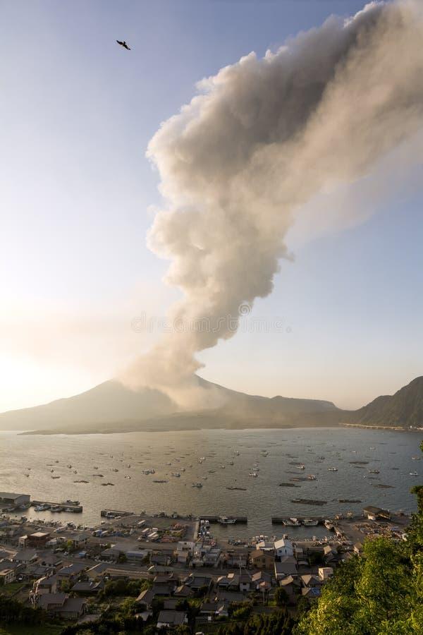 Sakurajima volcanic plume. And many small fishing boats in Tarumizu, Kagoshima stock photography