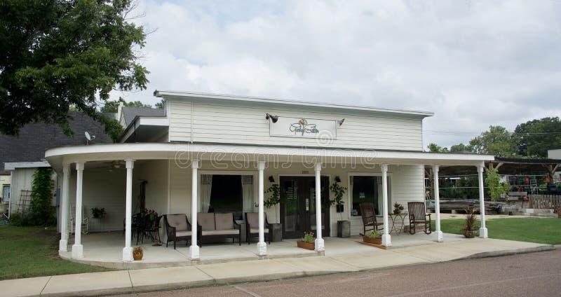 Salão de beleza da nogueira-do-Japão, Hernando, Mississippi fotografia de stock royalty free