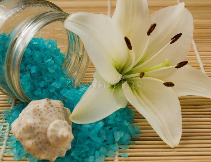 Sal do mar imagem de stock