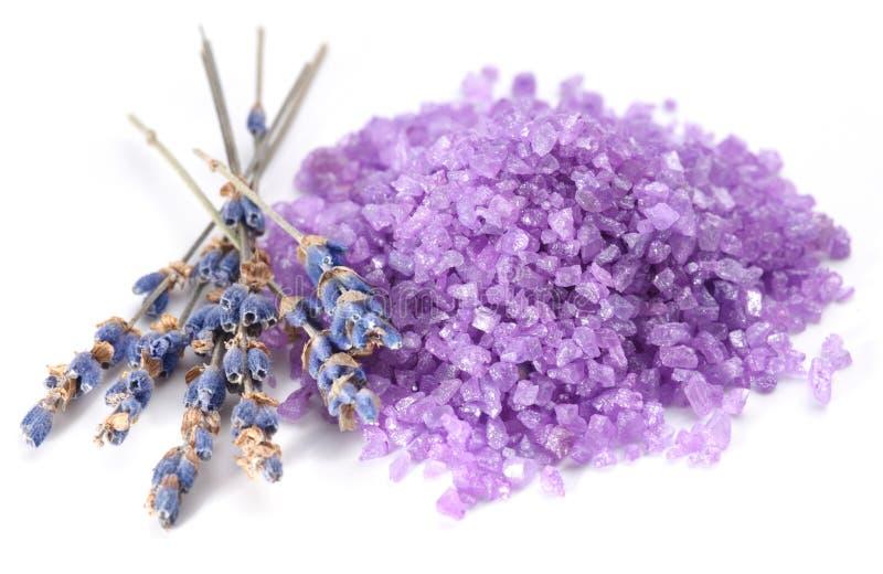 Sal do mar flavored com as flores secadas da alfazema. foto de stock royalty free