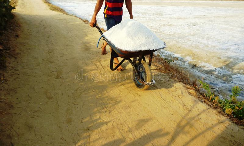 Sal que cultiva na costa leste de Rembang foto de stock royalty free